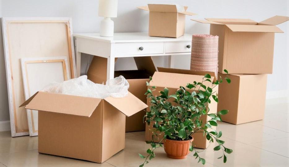 consignes d'hygiène déménagement